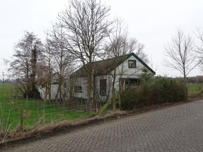 Zuiderzeekeet, Wieringen (Den Oever)